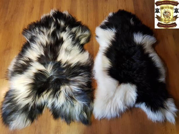 10.Icelandic multi coloured sheepskins : With straight or curly wool Decorative multi