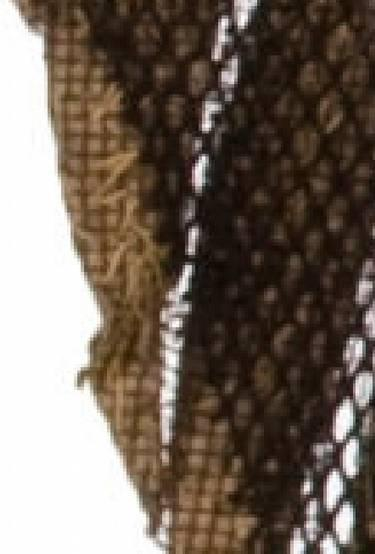photo shows mesh backing on feathers and mesh attached to net. Note tan stitches from application of beadwork. The overdress worn as part of the Ceremonial Costume has a complicated history.