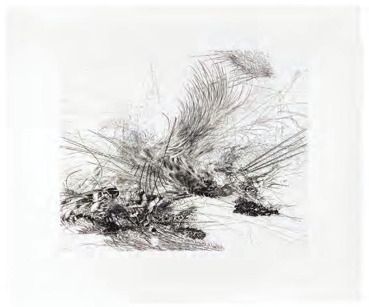 JULIE MEHRETU Untitled, 2006 For Parkett 76 5-color etching, engraving and drypoint on Somerset white textured 300g/m 2, paper size: 23 1 /4 x