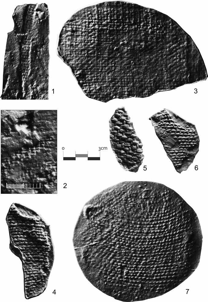 34 Paula Mazăre Fig. 1.23: Examples of textile imprints found in Neolithic and Copper Age sites (positive casts): Woven textiles 1. LBT.1050, Limba-Bordane, B1 B2 Vinča culture; 2. ALN.