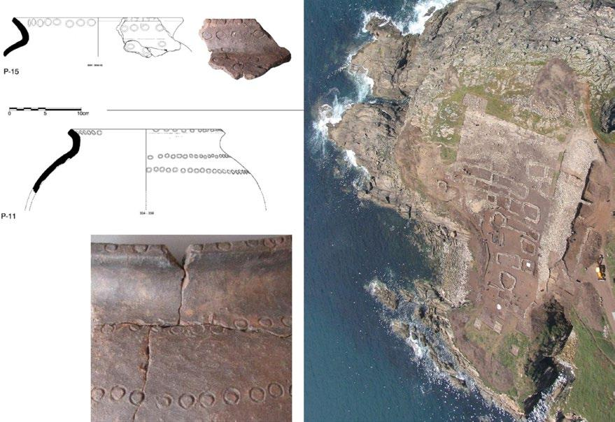 L. Nonat, M. P. Prieto-Martínez and P. Vázquez-Liz: From the regional to the extra-regional Figure 7. Stamped pottery from the site of Punta de Muros (9th-8th centuries BC) (based on Cano 2012).