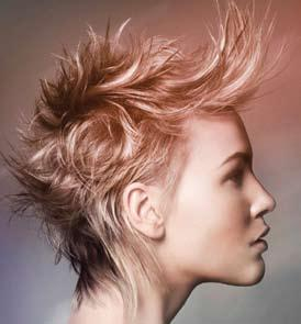 Comment form Unit 226 The art of colouring hair This form can