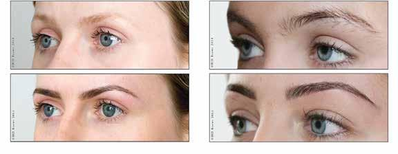 HAY LEY S BEAUTY BOUTIQUE HIGH DEFINITION BROWS HD
