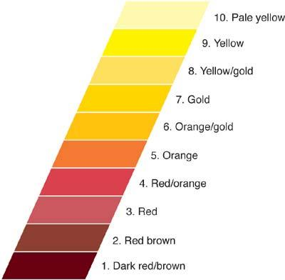 TEN DEGREES OF DECOLORIZATION Dark red/brown Red/brown Red